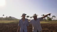 27-Farmer And Son Walking In Seeded Field Talking Planning Cultivations video