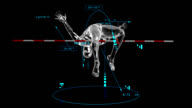 3d High Jumper with technical data video