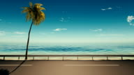3d,Asphalt road near the sea with a palm tree video
