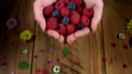 4k Colourful Composition of Fresh Berries in Hand - Wooden Background video