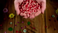 4k Colourful Composition of Fresh Pomegranate in Hand - Wooden Background video