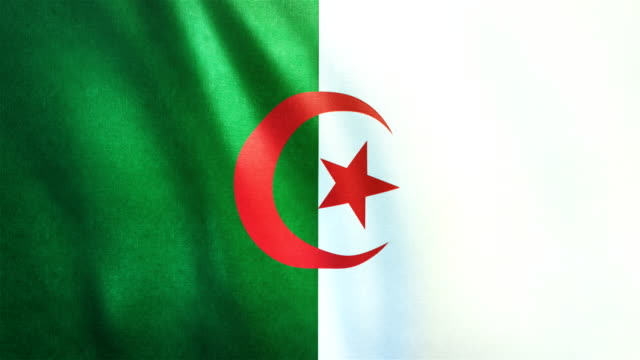 4k Highly Detailed Flag Of Algeria - Loopable video