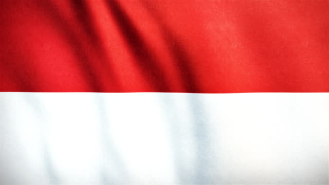 4k Highly Detailed Flag Of Indonesia - Loopable video