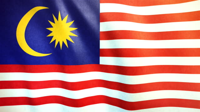 4k Highly Detailed Flag Of Malaysia - Loopable video