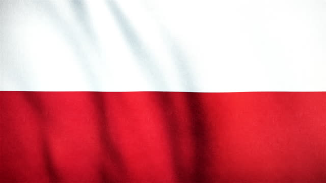 4k Highly Detailed Flag Of Poland - Loopable video