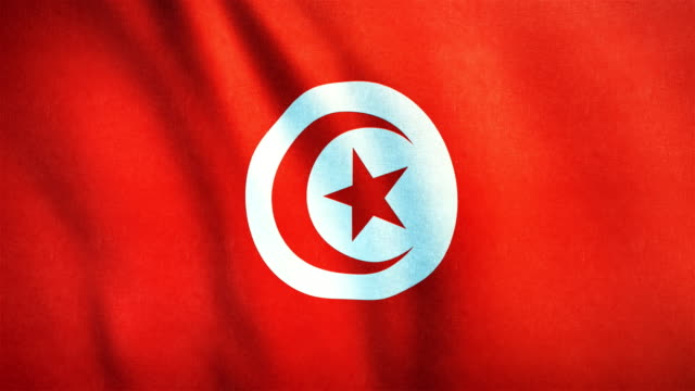 4k Highly Detailed Flag Of Tunisia - Loopable video