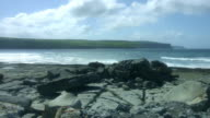 4k Shot of Cliffs of Moher View in Ireland video