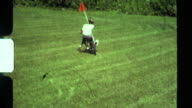 8mm, Boy learning to ride bike on grass. Crashes video
