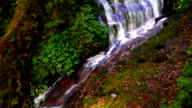 a dolly shot of Kew Mae Pan Waterfall,in Doi Inthanon National Park.,Chiang Mai video