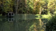a log cabin for the fishermen on the lake in the woods video