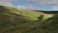 Abandoned Barn in Field video