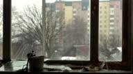 Abandoned home 24. Broken window video