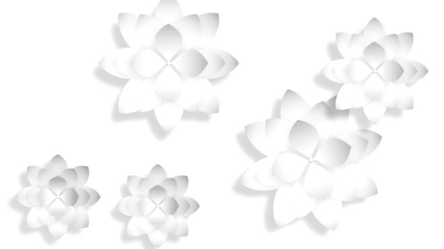 Abstract 3d background, white flowers video