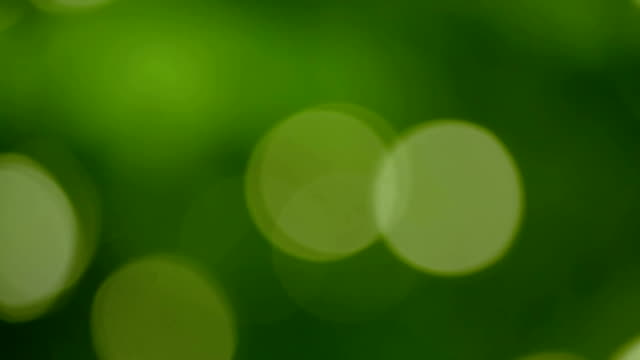 Abstract Green Background with Dots video