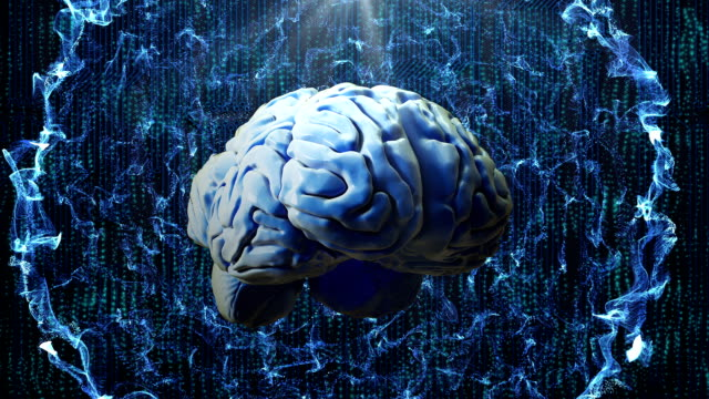 Abstract human brain on technology background video