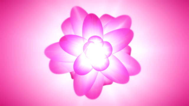 Abstract Lotus Background top view video
