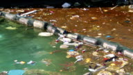 Abuse of environment. Garbage floats in the sea near the coast video