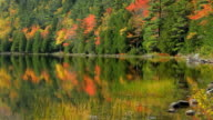 Acadia Autumn reflections video