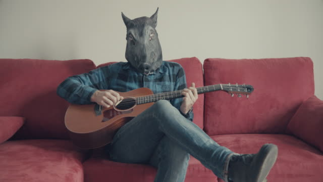 Acoustic guitarist with wild boar head playing guitar video