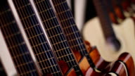 Acoustic Guitars in Row video