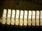 Acoustic Piano, Hammer Closup video