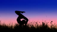 Acrobat girl exercising in the evening field video