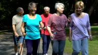 Active females communicating while walking with men in park video