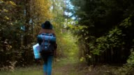 TRACKING FOLLOW Active healthy Caucasian woman with a backpack hiking in autumn forest. Young hiker holding a map video