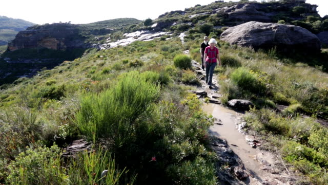 Active Senior Couple Hiking video