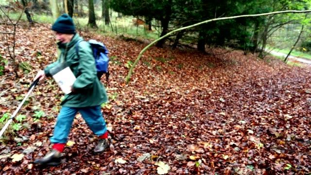 Active Senior Man Walking Through a Forest video