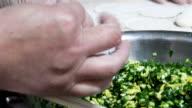 CU Adding Dumpling Filling into Dumplings And Making / Beijing, China video