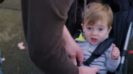 Adorable baby boy being buckled into a stroller in a park video