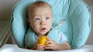 Adorable baby boy eating lemon video