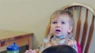 Adorable baby boy sitting in a high chair booster seat, a dog eats his food and the boy starts crying video