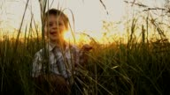 SLO MO Adorable little boy having fun in grass video