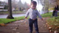 Adorable little boy walking in a park on a fall day video