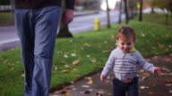 Adorable little boy walking in a park on a fall day with his dad video