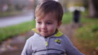 Adorable little boy walking toward the camera in a park on a fall day video