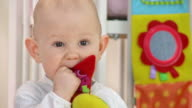 HD: Adorable Toddler Biting A Toy video