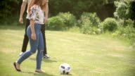 Adult friends having fun with a football on a playing field video