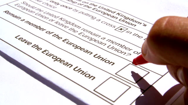 Adult Ticking To Remain In The EU British Election Form video