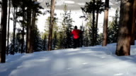 Adult Woman on Snow Shoes in Colorado video