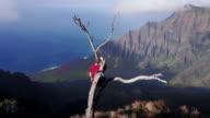 Adventure seeker in tree surveying beautiful mountain landscape video