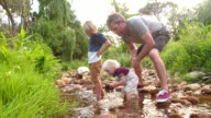 Adventurous children exploring the world and river with his dad video