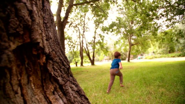 Adventurous little boy running in park exploring nature video
