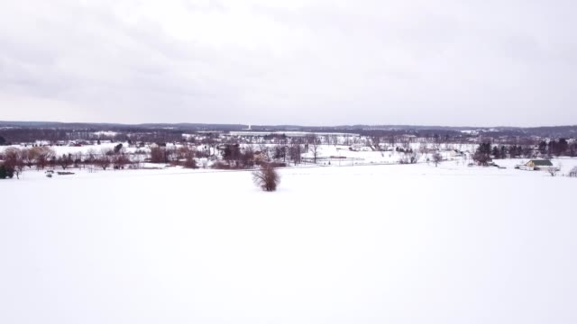 Aerial blizzard in the countryside video
