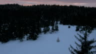 Aerial - Christmas tree placed on a snowy glade in forest video