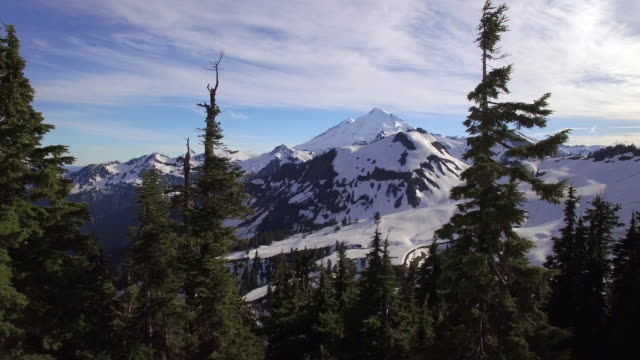 Aerial Dolly of Snowy Mountain Range with Forest Trees Panning in Foreground video
