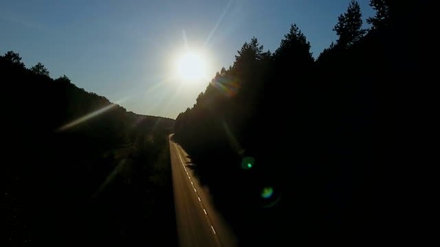 Aerial Flight over the road between fields and beautiful forest. video