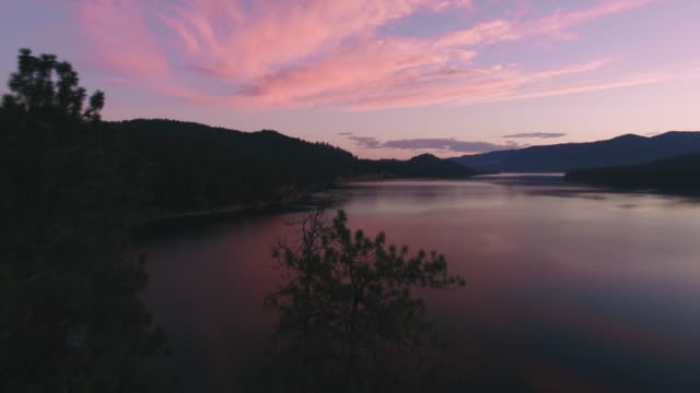 Aerial Flight Over Trees to Reveal Large Lake with Pink Sunset video